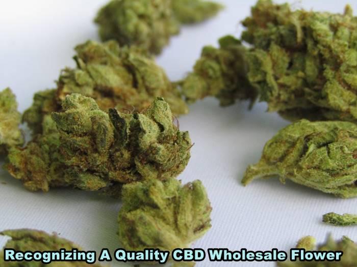 Recognizing A Quality CBD Wholesale Flower
