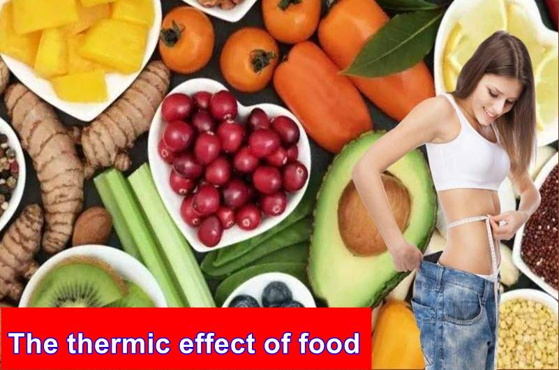 The thermic effect of food