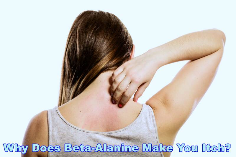 Why Does Beta-Alanine Make You Itch